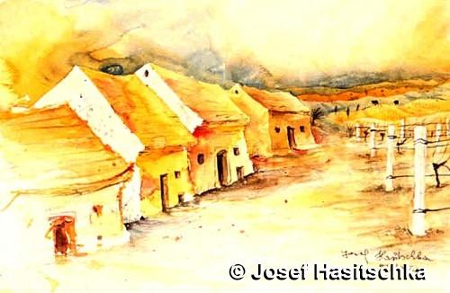 im Weinviertel gibt es Keller, Weinstöcke und ruhige Landschaft